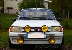 205-rallye-rcf-4